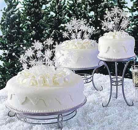 Wedding Ideas  Winter on Winter Wedding Theme Ideas   Wedding Plan Ideas