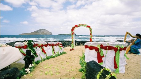 christmas beach wedding theme