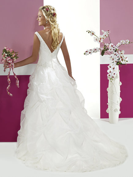 V Neckline Wedding Dress Back